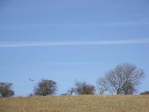 Globemaster C-17 flys low over Weston