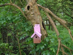 GB3WB Tree Bird Box